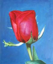 Květiny - Rudá růže, obrazy ručně malované