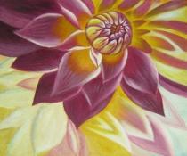 Květiny -  Rozkvetlá Chrizantéma, obrazy ručně malované