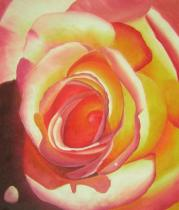 obrazy, reprodukce, Čajová ruža