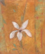 Květiny - Naděje, obrazy ručně malované