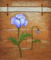Květiny - Fialkové květy, obrazy ručně malované