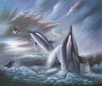 Zvířata - Delfíni a racci, obrazy ručně malované