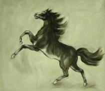 obrazy, reprodukce, Vzpínající sa kôň