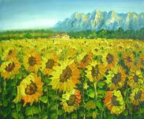bestseler: Slunečnicové pole 5