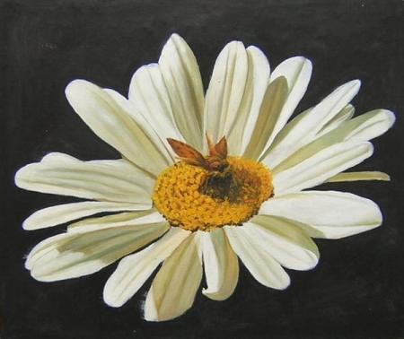 obrazy ručně malované - obraz Květiny - Pilná včelka, obrazy do bytu