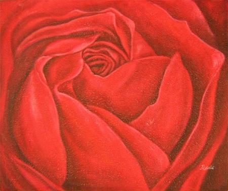 obraz Detail rozvité růže
