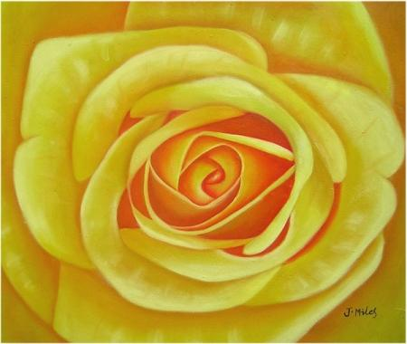 obraz Žlutá růže
