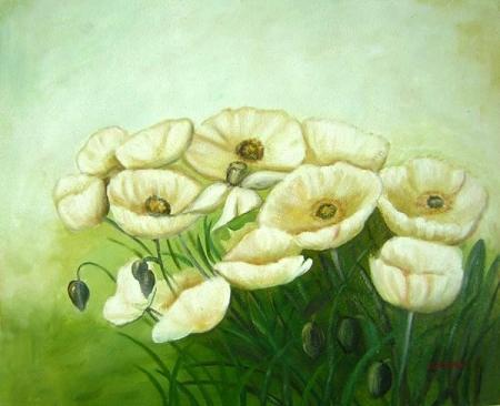 obraz Harmonie bílé máky