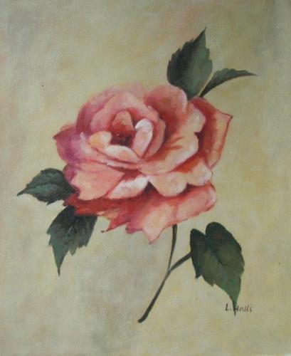 obraz Růžová růže