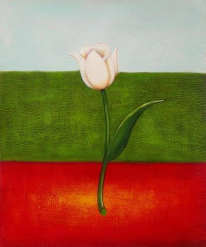 obraz Italský tulipán