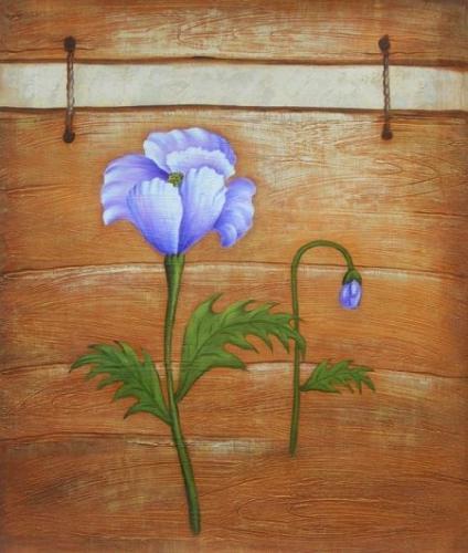 obraz Fialkové květy