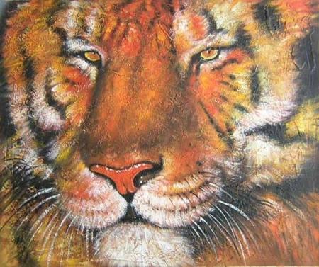 obraz Tygr