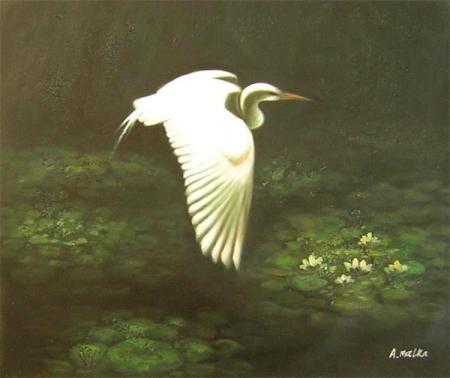 obraz Letící volavka a lekníny