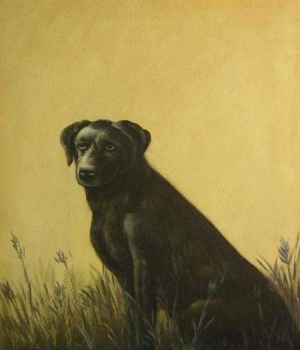 obraz Smutný pes