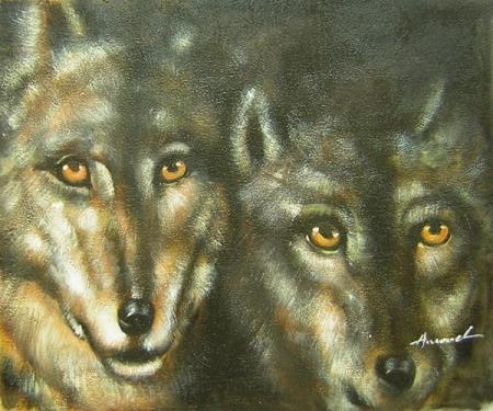 obraz Dva vlci