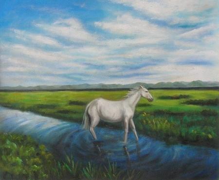 obraz Kůň na louce