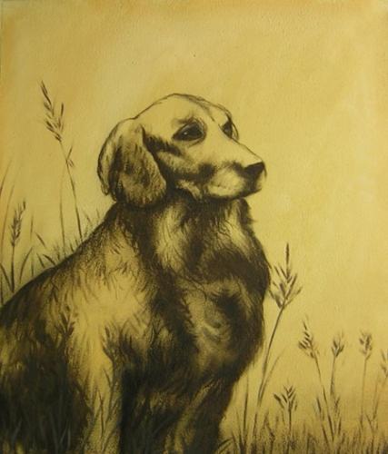 obraz Lovecký pes