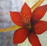 obraz Červený květ