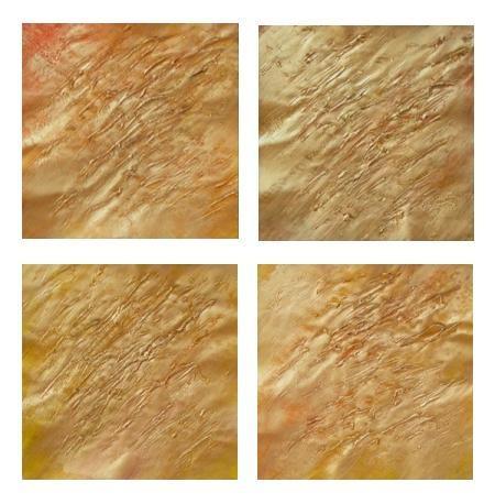 obraz Abstrakce zlatá