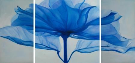 obraz Modrý květ