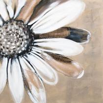 Obrazy květin - Kopretina, obrazy ručně malované