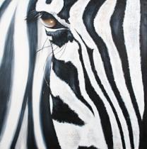 Motýli, koně, lodě - Zebra, obrazy ručně malované
