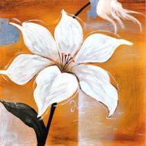Obrazy květin - Bílá lilie, obrazy ručně malované