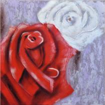 obrazy, reprodukce, Biela a červená ruža