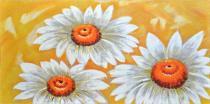 Obrazy květin - Bílé kopretiny na žlutém pozadí, obrazy ručně malované