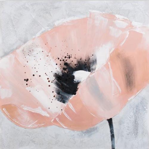 obraz Růžový vlčí mák