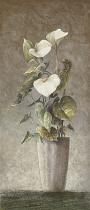 obrazy, reprodukce, Anthurium andreanum