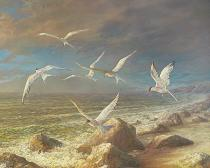 obrazy, reprodukce, Vtáky. Neznáma krajina