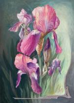 obrazy, reprodukce, Iris fialový II