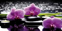 bestseler: Spa still life with set of pink orchid and stones