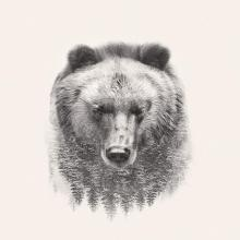 obrazy, reprodukce, Medveď 2
