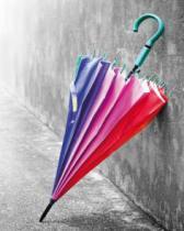 obrazy, reprodukce, Umbrella