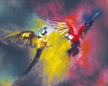 obrazy, reprodukce, Papagáje