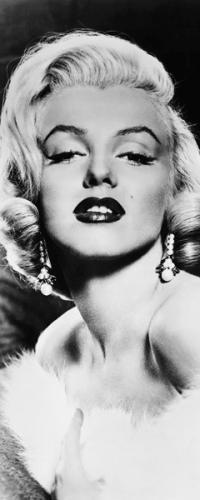 obraz Marilyn Monroe (20 x 50)