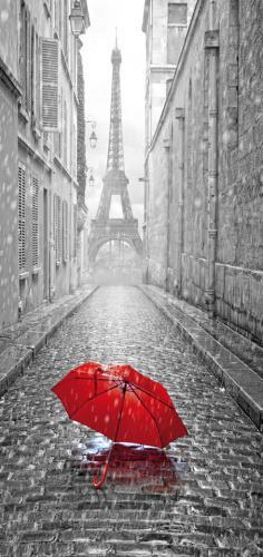 obraz Černobílá Paříž