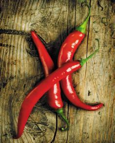 obraz Chilli papričky 1