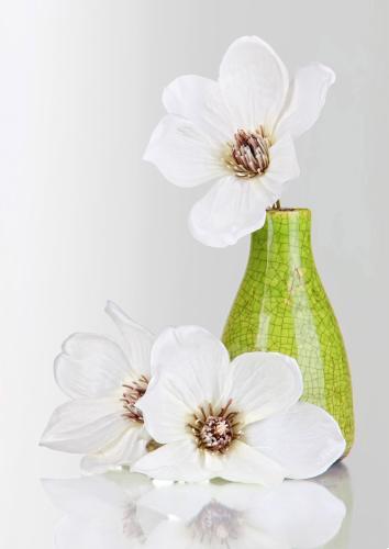 obraz Flower 13