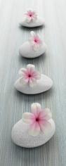 obraz Flower and stone 2