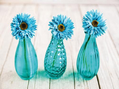 obraz Tři modré květiny