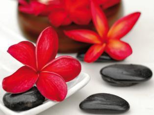 obraz Flower and stone 4