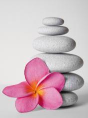 obraz Flower and stone 6