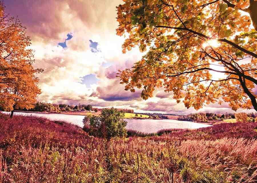 obraz Jezero v krajině