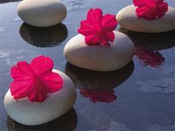 obraz Květiny a kameny