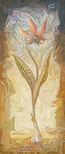 obraz Kandík