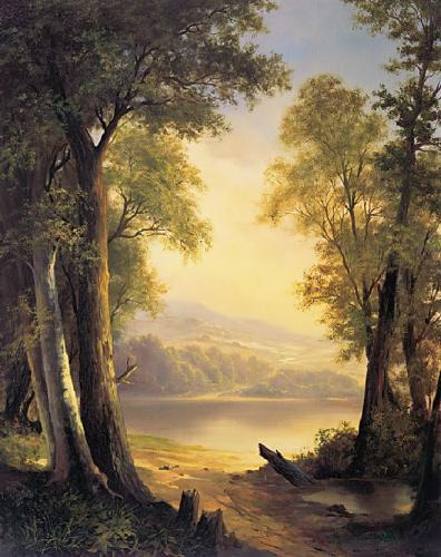 obraz Háj nad jezerem