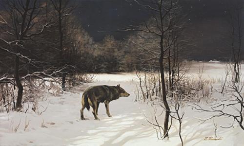 obraz Hviezdna noc. Vlk